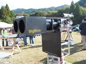 BigBino