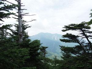 近くの山々の眺め